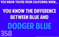 Dodger Blue     TRUTH !!!!