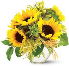 Teleflora's Sassy Sunflowers