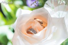 Traditional Wedding Details- Bride and groom rings in white rose