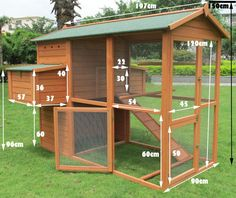 Do you have a flock of chickens that are growing in size? If your chickens have outgrown their small coop or if you're thinking of bringing home a large Backyard Chicken Coop Plans, Building A Chicken Coop, Chickens Backyard, Chicken Coop Plans Free, Small Chicken Coops, Pet Chickens, Chicken Coop Designs, Chicken Nesting Boxes, Chicken Cages
