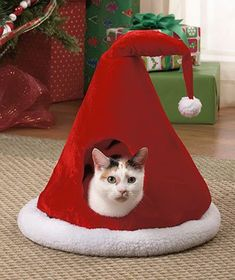 "SANTA'S HAT PET CAVE--""Wadda you looking at? My hat/pet cave is better cooler that that Christmas sweater you're wearing. Did you get a look at yourself before you came downstairs honey?"""