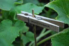 Great garden markers