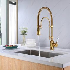 commercial style sink and faucet
