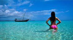 National Geographic Wild HD ● Beautiful Islands Zanzibar ● Nature Histor...