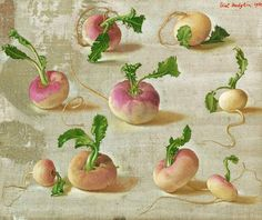 View Nine spring turnips by Eliot Hodgkin on artnet. Browse upcoming and past auction lots by Eliot Hodgkin. Botanical Illustration, Botanical Prints, Watercolor Illustration, Food Art Painting, Fruit Painting, Vegetable Drawing, Grain Of Sand, Art For Art Sake, Edible Garden