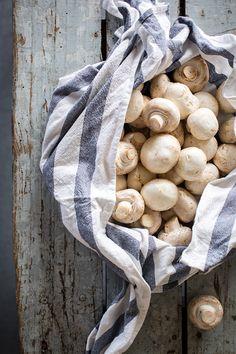 Mushrooms | Because Blog