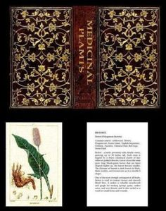 Dollhouse-Mini-Limited-Edition-Medicinal-Plants-Book-Miniatures-for-Doll-House
