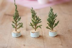 12 Fresh Ways To Decorate Your Home For The Holidays: DIY Mini Trees