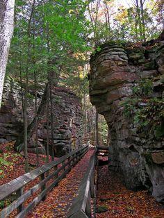 Beartown State Park - West Virginia