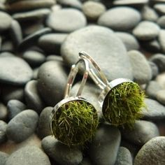 Check out these pieces of jewelry made out of living plants!