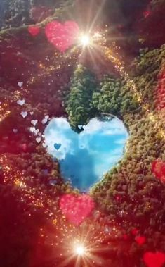 Beautiful Love Pictures, Beautiful Photos Of Nature, Beautiful Fantasy Art, Beautiful Nature Wallpaper, Beautiful Gif, Love Heart Images, Love You Images, Flower Phone Wallpaper, Heart Wallpaper
