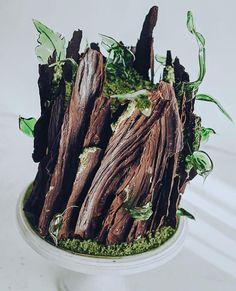 Cake Beautiful Cakes, Amazing Cakes, Moss Cake, One Tier Cake, Extra Recipe, Tree Cakes, Forest Cake, Cake Photography, Wedding Cake Rustic
