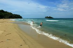 playa cocles cocles island   - Costa Rica