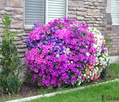Cascading flower pallet planter box Sept