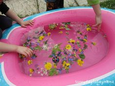 pick flowers for the water table