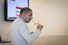 Adega Mayor, Wine tasting and wine activities, Alentejo - Go Discover Portugal travel