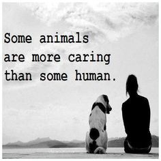 Some animals are more caring than some human.