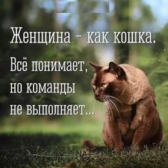 There is nothing to do with it, just accept and continue living. True Quotes, Best Quotes, Funny Quotes, Positive Words, Positive Quotes, Russian Quotes, Spiritual Life, In My Feelings, Cool Words