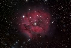 The Cocoon nebula is about light years from us. This is a 23 hour exposure on multiple nights I took in my back yard observatory. Cygnus Constellation, Photoshop Plugins, Light Year, Constellations, Astronomy, Yard, Image, Patio, Star Constellations