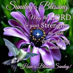 sunday blessings quotes and images | Sunday's Blessing Pictures, Photos, and Images for Facebook, Tumblr ...