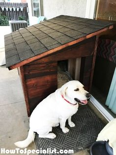 Dog House Plans for Large Dog MyOutdoorPlans Free Woodworking Plans and Projects, DIY Shed, Wooden Playhouse, Pergola, Bbq Large Dog House Plans, Extra Large Dog House, Large Dogs, Winter Dog House, Cheap Dog Houses, Building A Dog Kennel, Wooden Dog House, Dyi Dog House, Homemade Dog House