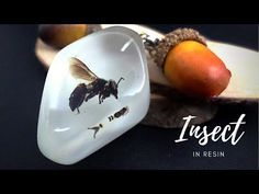 DIY. KERAJINAN RESIN BENING (BEE IN RESIN) / RESIN ART - YouTube Making Resin Rings, Resin Art, Bee, Youtube, Youtubers, Youtube Movies