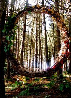 """Duas crianças brincando no bosque perto de casa. Se deparam com esse círculo de galhos que parece um portal e uma criança fica curiosa e a outra receosa.  A curiosa passa pelo círculo e nada acontece. Elas riem e sempre que brincam ali, correm e passam pelo círculo.  Até que um dia, dois risos se tornam um, a criança da frente se vir e a outra sumiu. A que ficou cresce obcecada com o """"portal"""". By Z"""