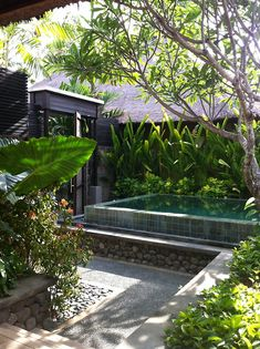 Balinese style pool and garden. Natural materials and big leafy plants, it's…
