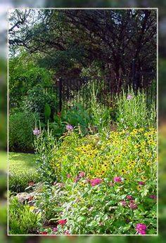Butterfly garden info from a gardening company