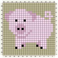 PIG 25 X 25