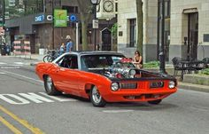 70 Plymouth Cuda. What can be better than a blown Cuda running large meats, on the street ! I want it !