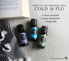 Ways to use essential oils: Cold and flu – Edens Garden