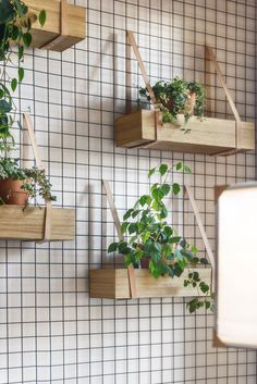 Boxes of plants and/or chotchkes. I like the idea of giving people things to look at.