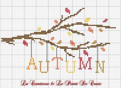 E' autunno, ormai... ...e per accogliere questa meravigliosa stagione ( la mia preferita ) un ramo, quasi spoglio, da cui si stacca...