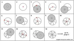 CD Cover Flower Pattern