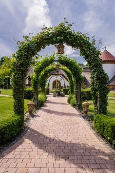 Discover Beauty around Neusiedlersee in Burgenland Austria | The Travel Tester: