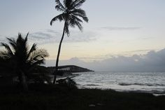 Where the old railroad bridge, meets the tropics enchantment.