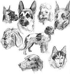 :::Dogs::: by lost-b1atch.deviantart.com