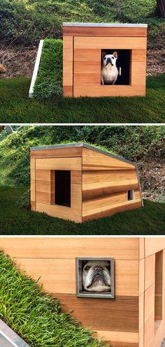 Studio Schicketanz have designed a modern Dog Dream House, that features  wood construction, a e9dd28c607