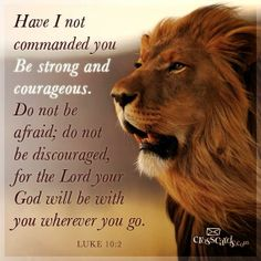 Joshua 1:9, i love to think of God like a lion strong and mighty, yet peaceful and patient