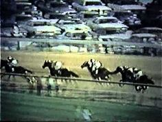 Secretariat's Triple Crown Run - 1973 Triple Crown winner, one of the the greatest thoroughbreds of all-time.