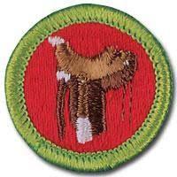 17 Merit Badges Ideas Merit Badge Boy Scouts Merit Badges Scout Badges