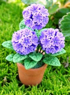 Miniature Hydrangea-lots of amazing Fairy Garden miniatures on this site.