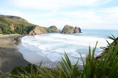 Piha Black Sand Beach. Piha is just a short drive from Auckland central, with beautiful scenerey and walks.