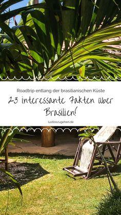 Du wolltest schon immer mal nach Brasilien oder planst schon deine Reise? Schau unbedingt vorher vorbei, ich berichte Dir von ein paar überraschenden Fakten. #brasil #brasilien #reisetipps #südamerika