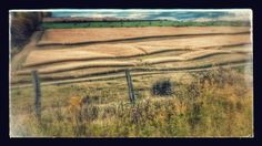 Quilted field