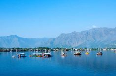 DAL LAKE IN SRINAGAR, KASHMIR Dal Lake is one of the most romantic holiday destinations in India, offering boathouses and shikara rides and has been the picturesque setting for many Bollywood movies over the decades.