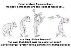Evolution Exam
