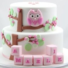 Pink Owl Christening/Baby Shower Cake