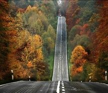 Inspiring picture art, autumn, autumn road, beauty, car, color. Resolution: 500x332 px. Find the picture to your taste!